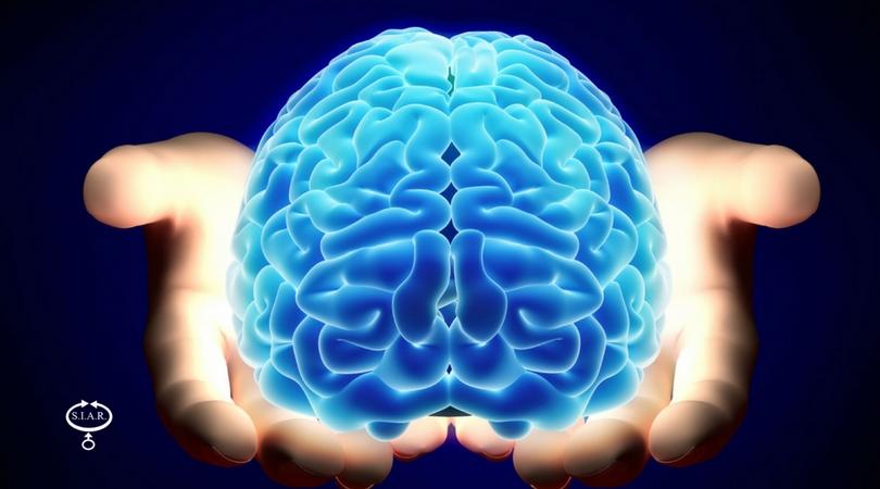 No, non usiamo solo il 10% del nostro cervello