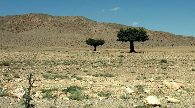 Il deserto avanza, anche in Italia